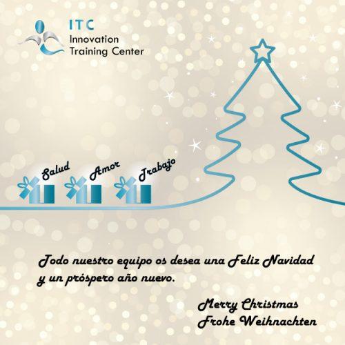 Felíz navidad y próspero año nuevo 2019 –  Merry Xmas and happy new 2019